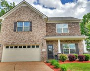 8008 Tiger Ct, Spring Hill image