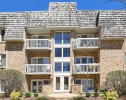 930 Rogers Street Unit 203, Downers Grove image