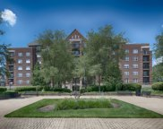 410 West Mahogany Court Unit 204, Palatine image