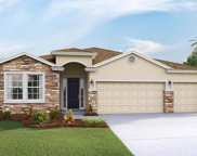 16911 Harvest Moon Way, Bradenton image