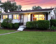 242 Pleasant Rd, Mount Olive image