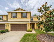 8512 Zapota Way, Tampa image