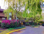 7451 Minoru Boulevard Unit 331, Richmond image