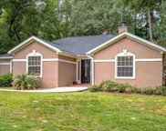10502 Blue Wing, Tallahassee image
