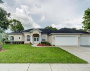 4108 Misty View Drive, Spring Hill image