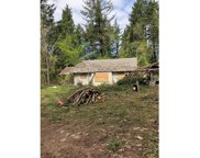 35775 ROW RIVER  RD, Cottage Grove image