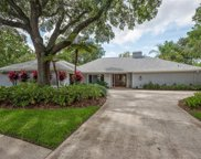 4205 Wayside Willow Court, Tampa image