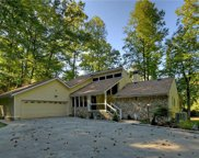 321 Call Wright Road, Ellijay image