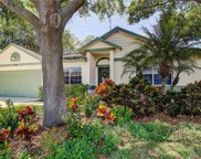 744 Stonehenge Way, Palm Harbor image