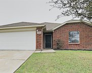 14129 Filly Street, Fort Worth image