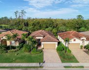 20292 Black Tree LN, Estero image