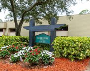 36750 Us Highway 19  N Unit 1-113, Palm Harbor image