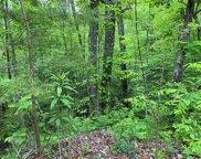Lot 12 Black Oak Drive, Sevierville image