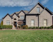 1028 Alice Springs Cir, Spring Hill image