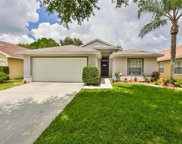 4523 Wild Plum Lane, Lutz image