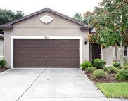 4516 Paper Mulberry Place, Riverview image