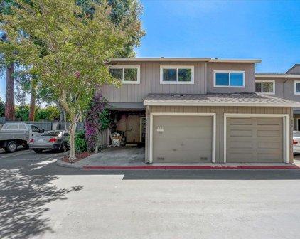 486 Hollyberry Ct, San Jose