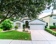19126 Meadow Pine Drive, Tampa image