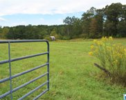 380 Isbell Rd, Odenville image