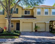 9219 Stone River Place, Riverview image
