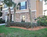 2405 Courtney Meadows Court Unit 101, Tampa image