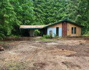30107 Mountain Loop Hwy, Granite Falls image