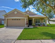 4911 Whistling Pines Court, Wesley Chapel image