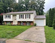 5145 Bradfield Dr, Annandale image