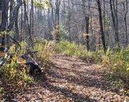 0 Buck Knob, Scaly Mountain image