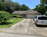 3985 Wood Drive, Mount Dora image
