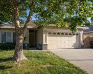 8669  Blue Maiden Way, Elk Grove image