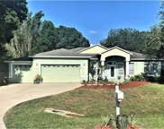 908 Riviere Road, Palm Harbor image