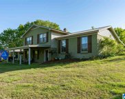 6108 Knob Knoster Road, Pinson image