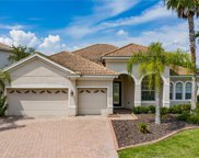 10513 Martinique Isle Dr, Tampa image