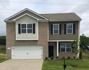 8056 Forest Hill Drive 417, Spring Hill image