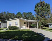 2117 Stacey Drive, Mount Dora image