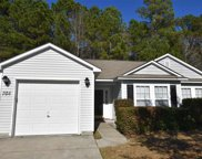 708 Coffee Tree Ct., Myrtle Beach image
