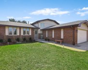 14844 South Cricketwood Drive, Homer Glen image