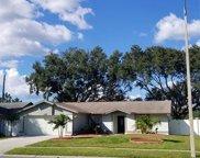 4403 Birchwood Court S, Tampa image