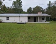 22301 Pond  Road, Andalusia image