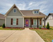 830 Hawthorn Ln, Odenville image