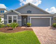 10641 Cardera Drive, Riverview image