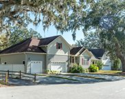 682 Edentree Place, Charleston image