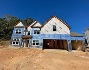 2088 Sidney Cove Court, Buford image