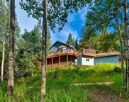 31931 Steven Way, Conifer image