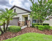 11343 American Holly Drive, Riverview image