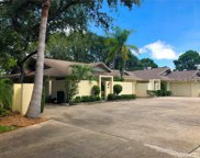 105 Parkside Colony Drive, Tarpon Springs image