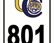 801 Thomas Boyd Dr, Baton Rouge image