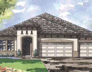 13252 Wildflower Meadow Drive, Riverview image