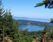 4 (lot #) Hidden Ridge Trail, Orcas Island image
